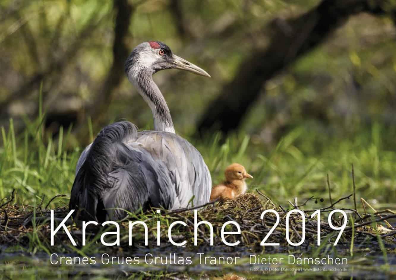 Titelblatt Kranichkalender 2019. © Dieter Damschen